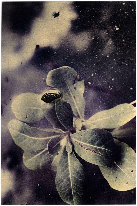 umberto fiori umberto fiori la profondit 224 dell evidenza doppiozero