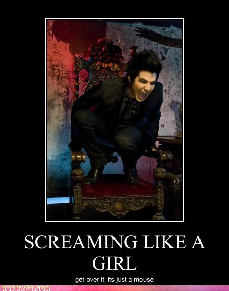 Adam Lambert Memes - sissy archives randomoverload