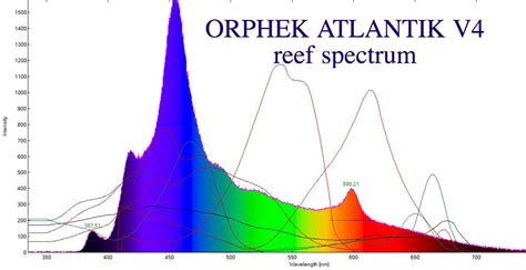 best light spectrum for coral growth best light spectrum for coral growth orphek