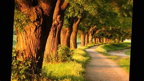 Imagenes De Paisajes Maravillosos | paisajes maravillosos youtube