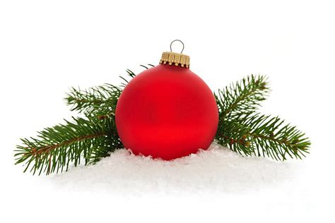 red christmas bauble photograph by elena elisseeva