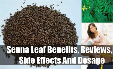 Hair Dryer Benefits And Side Effects senna leaf benefits reviews side effects and dosage vitamins estore
