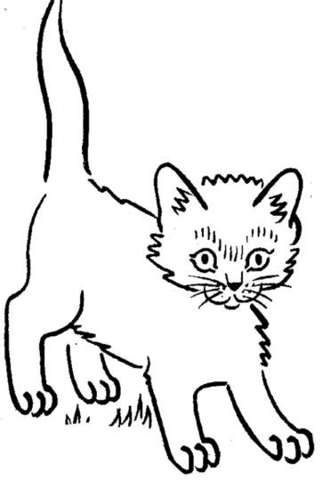 cute kitten coloring pages part 2 cute kitten coloring pages part 7