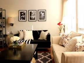 country rugs for living room furniture design ideas