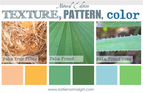 colors from nature nature color palette katie normal girl