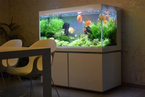 Pompa Aquarium Ginga your set up your maintenance