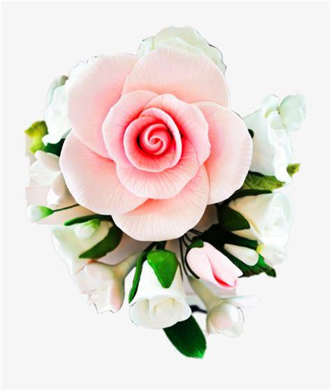 imagenes de flores bonitas para descargar gratis bonitas flores blancas blanco flores blancas flores png