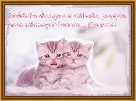 imagenes de niños tiernos orando imagenes de gatitos tiernos y bonitos archivos gatitos
