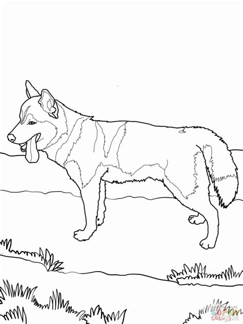 Siberian Husky Coloring Page Hd Wallpaper Id 58737 Siberian Husky Coloring Pages