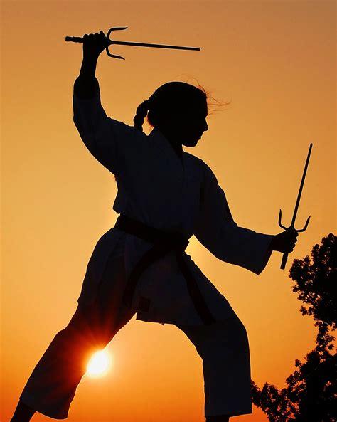 martial arts sports photo vincent