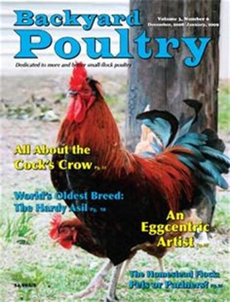 backyard poultry magazine backyard poultry covers on pinterest poultry backyards