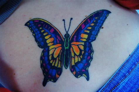 butterfly tattoo on buttocks 17 best images about butterfly on