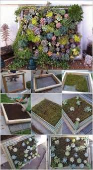 10 cool succulent planter ideas for your home