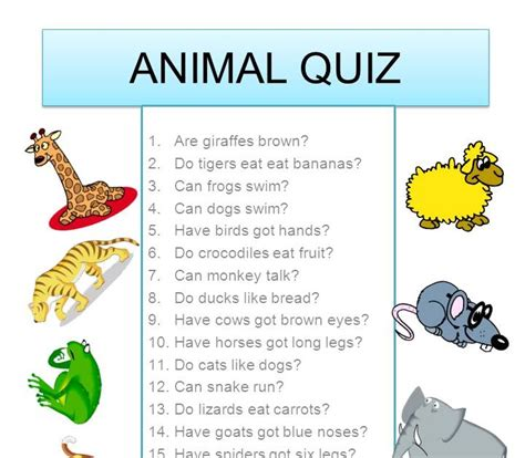 animal quiz goodie bag animal quiz