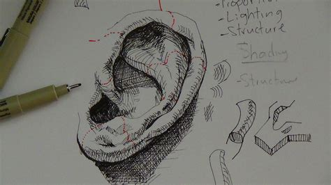 how to use doodle pen pen ink drawing tutorials how to draw a realistic ear