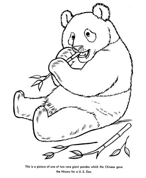 coloring page of a giant panda giant deer colouring pages