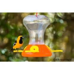 oriole feeders backyard bird centre