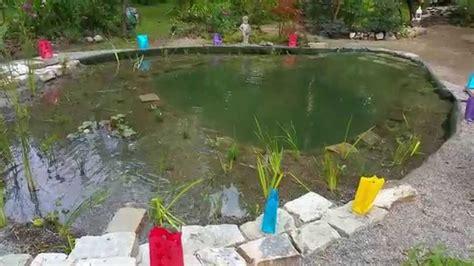 Schwimmteich Mit Fischen by Schwimmteich Mit Tauchbecken