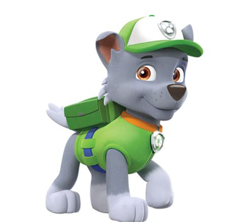 what of is rocky from paw patrol rocky from paw patrol nick asia