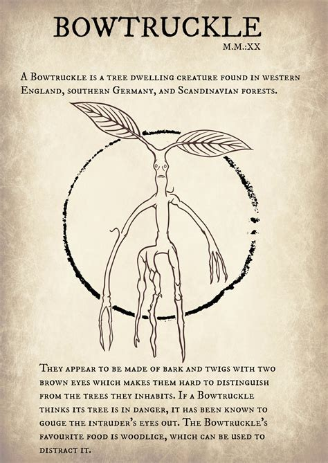 Where To Find Bowtruckle Fantastic Beasts And Where To Find Them By Guilarts On Deviantart