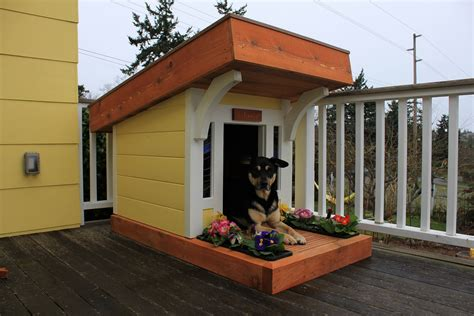 modern dog house plans dog house designs with creative plans homestylediary com