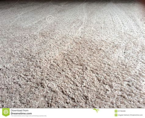 Carpet Carpet Clean Plush Carpet Floor Stock Photo Image 51799408