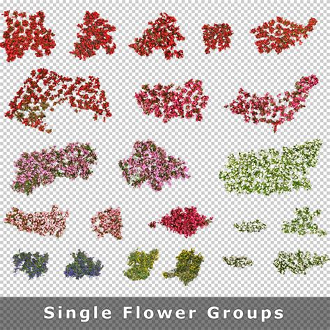 Cut Out Top Flower top view flowers cutout plan view images png for