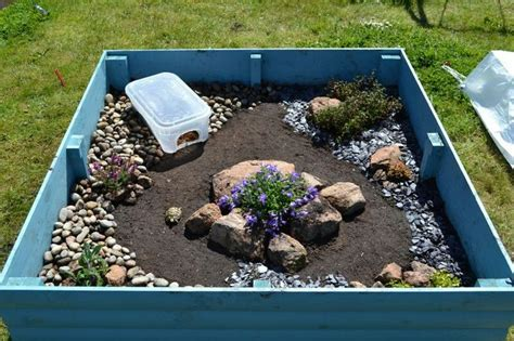 backyard tortoise indoor enclosure box turtle pinterest indoor