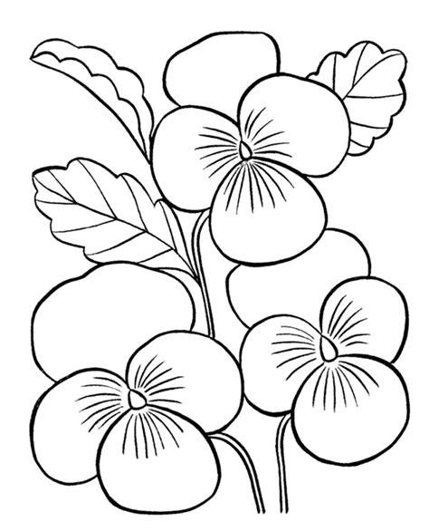 coloring pictures of beautiful flowers desenhos de flores para adultos e crian 231 as imprimir