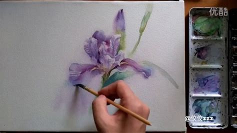 watercolor tutorial iris 979 best images about tutoriales acuarela on pinterest