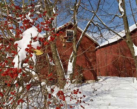photo ops christmas lancaster pa 17 best images about winter in lancaster county pa on sleigh rides