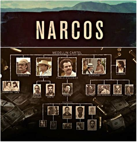 film serial narcos only best 25 ideas about film pablo escobar on pinterest