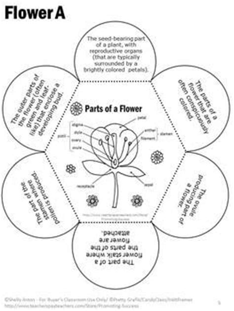 How To Make A Flower Out Of Notebook Paper - parts of a flower and their functions parts of a flower