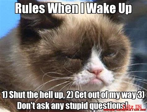 Shut The Hell Up Meme - rules when i wake up 1 shut the hell up 2 get out of my way 3 don t ask any stupid questions