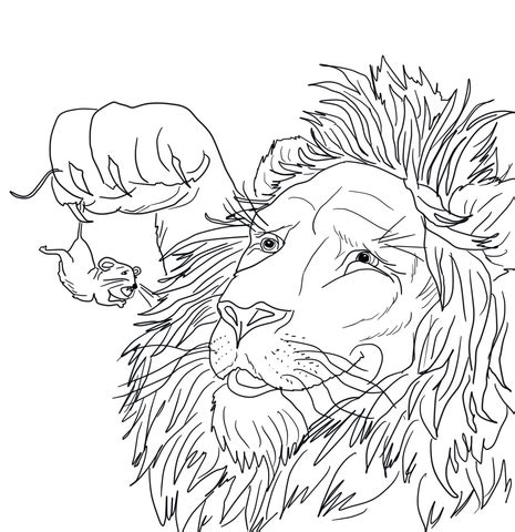 coloring pages lion and mouse 301 moved permanently