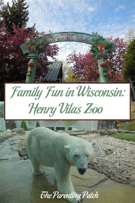 henry vilas zoo lights family fun in wisconsin henry vilas zoo parenting patch