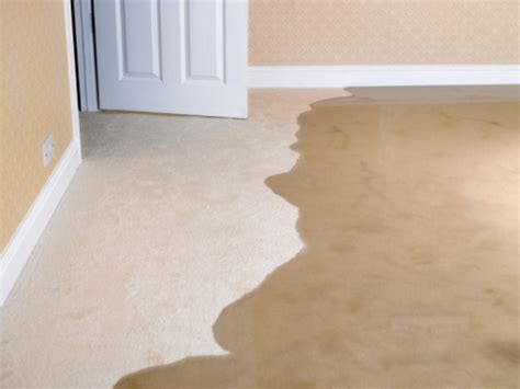 Royal Interior Cleaning by Odor Removal From Your Home Carpets And Furniture