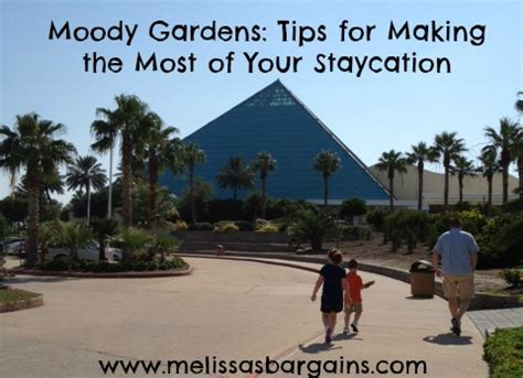 Moody Gardens Discounts by Moody Gardens 10 Tips For The Most Of Your Staycation