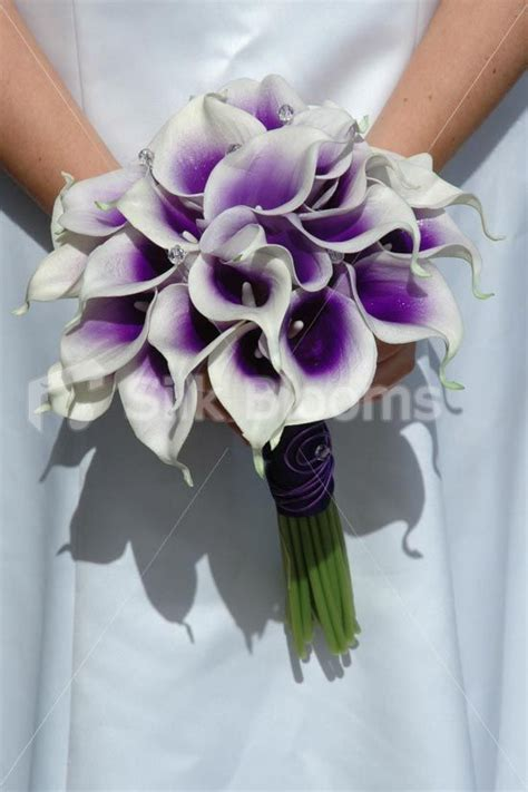 vibrant bridal bouquet with purple centred white picasso