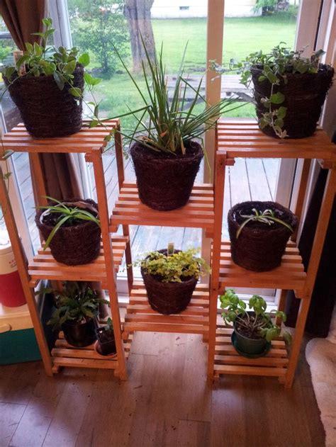 images  plant shelf  pinterest