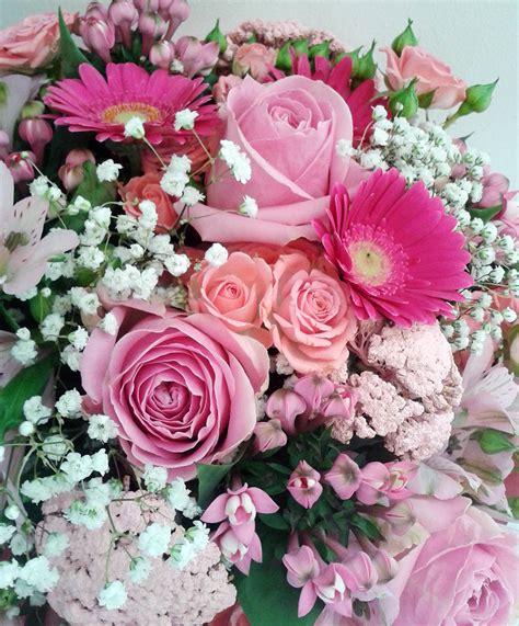 rosa fiori rosa fiori sala