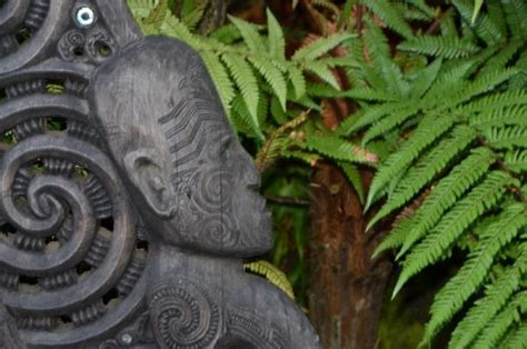 customs and culture in new zealand