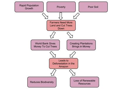 deforestation diagram deforestation diagram ssr5167