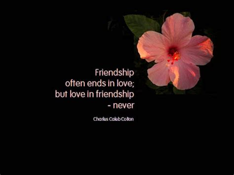 images of love n friendship thoughts n quotes friendship quotes love and friendship