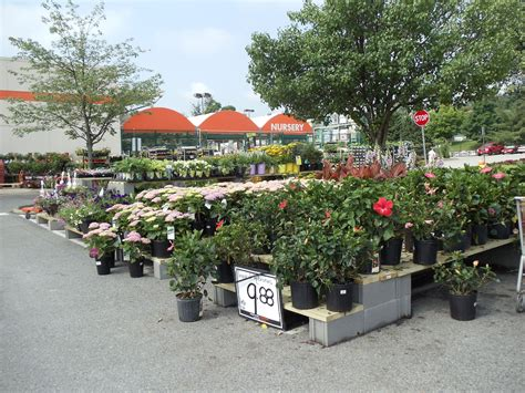 home and garden shop fresh nursery shopping
