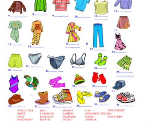 clothes for different seasons worksheet clothes vocabulary