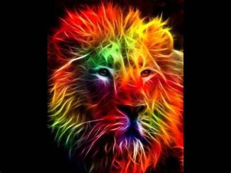 imagenes de leones de zona ganjah enganchado zona ganjah 2da parte youtube