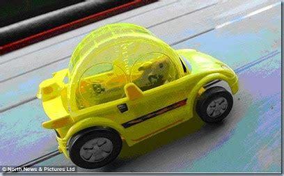 hamster mobil unik hamster sedang balapan mobil gambar