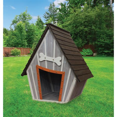 dog pet house innovation pet houses and paws whimsical dog house reviews wayfair