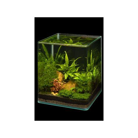 beleuchtung nano aquarium dennerle nano cube 10l aquarium shrimp tank pro shrimp uk